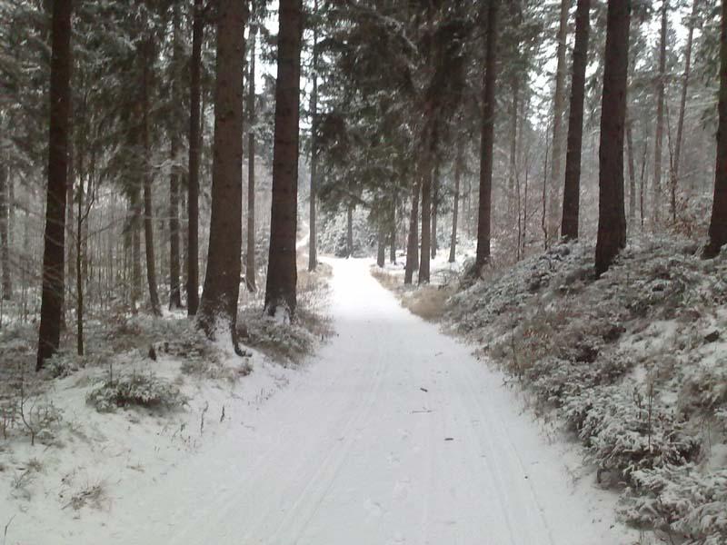 Pierwszy snieg