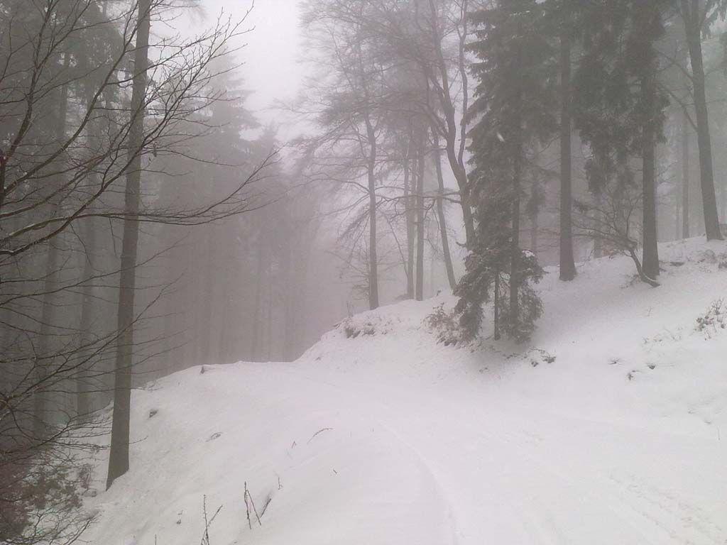 Biegowy szlak GS