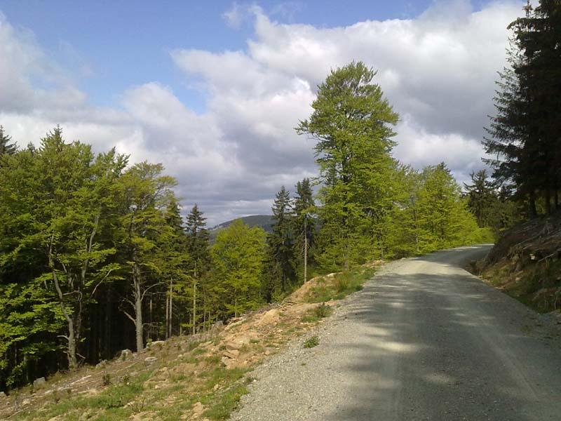 Długie wybieganie - Góry Sowie