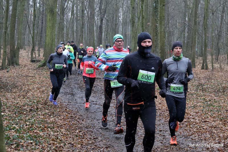 City Trail Wrocław