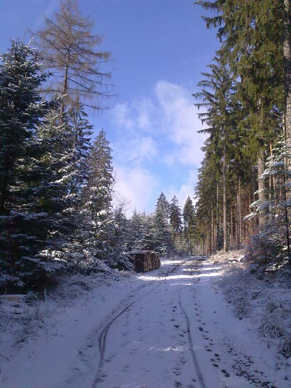Trasa w Ludwikowicach Kł